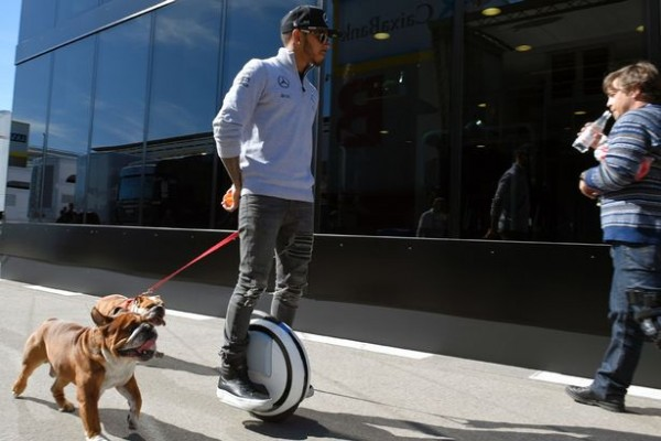A Hamilton dog earns $ 700 a day thumbnail